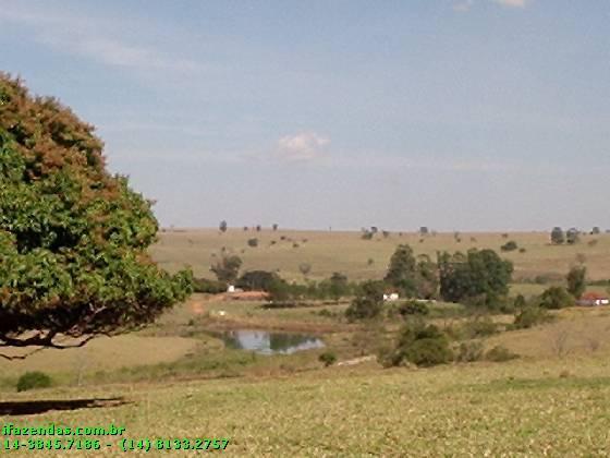 Fazendas em Agudos no bairro Não Especificado