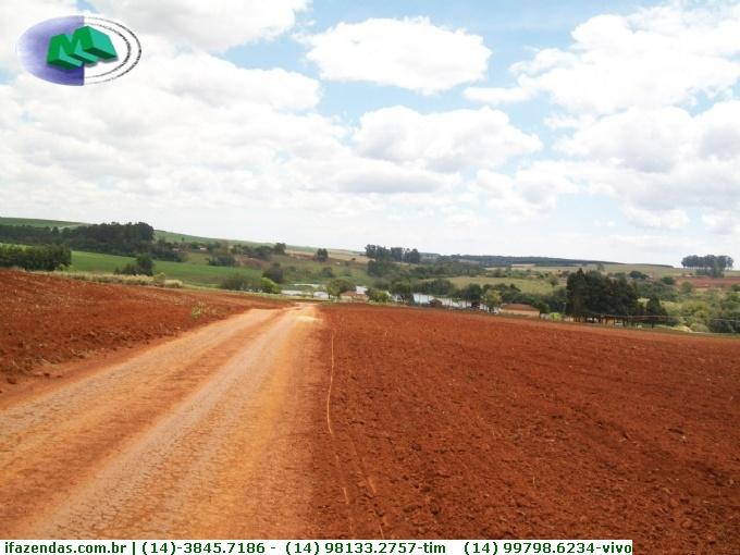Fazendas em Paranapanema no bairro Não Especificado