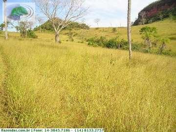 Pedra Preta PEDRA PRETA - MT   2.500 HECTARES  Ref: 1161