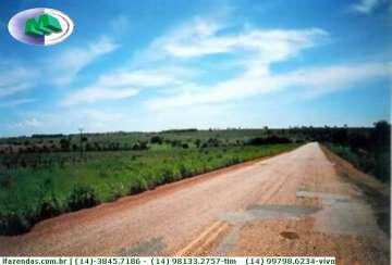 Primavera do Leste PRIMAVERA DO LESTE -MT 1.140 ALQ.  Ref: 1036