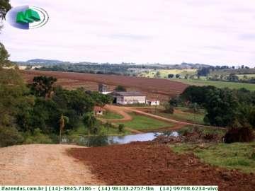 Fazendas no bairro Não Especificado na cidade de Avare