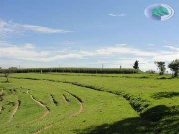 Fazendas no bairro Zona Rural na cidade de Itapetininga