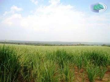 Fazendas no bairro Não Especificado na cidade de São Carlos