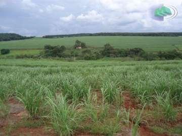 Fazendas no bairro Zona Rural na cidade de Botucatu