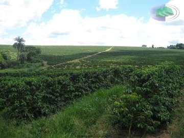 Fazendas Espirito Santo do Pinhal