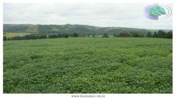 Fazendas Buri