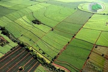 Fazendas Jau
