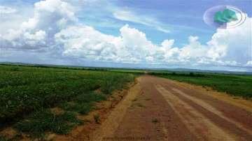 Nova Brasilandia NOVA BRASILÂNDIA - MT  5324HECTARES  Ref: 1322