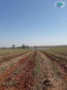 Fazendas Itapetininga