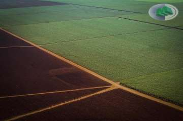 Fazendas Barra Bonita