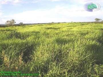 Cuiaba  CUIABÁ / MT 1008 Hect  Ref: 1041