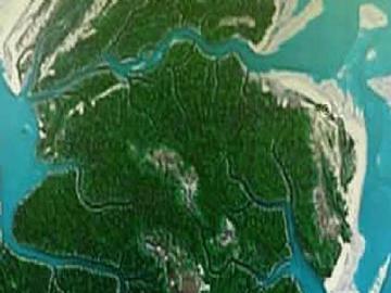 Ilhas Ponta de Pedras