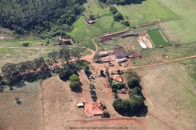 Fazendas em Santa Vitoria no bairro Não Especificado