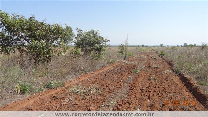 Fazendas em Itiquira no bairro Não Especificado