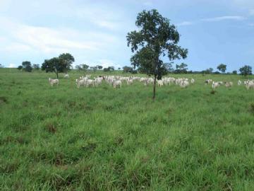 Fazendas  Barra do Garcas R$11.440.000,00