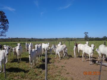 Fazendas  Barra do Garcas R$1.600.000,00
