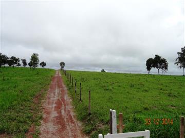 Fazendas no bairro Centro na cidade de Torixoreu