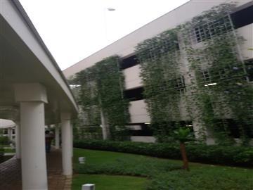Apartamentos Jardim Ana Maria R$550.000,00