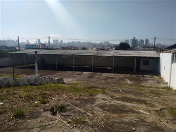 Terrenos São Bernardo do Campo 3038