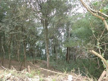Terrenos  Mairiporã São Gabriel das Jaboticabeiras
