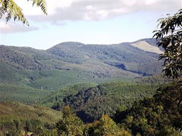 Terrenos Vilas de Monte Verde III R$60.000,00