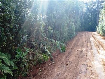 Terrenos Balneário Monte Verde R$Consulte-nos