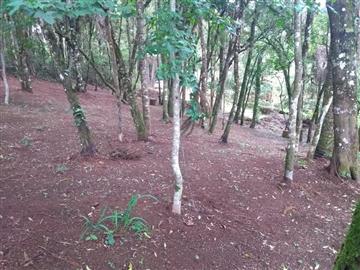 Terrenos Parque Monte Sol R$Consulte-nos