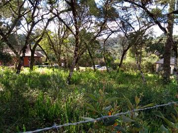 Terrenos Vila da Fonte R$Consulte-nos