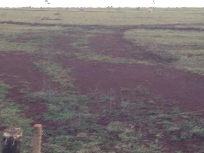 Fazendas em Maracaju no bairro Não Especificado