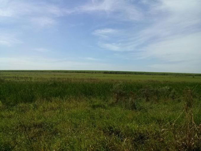 Fazendas em Brasilandia no bairro Não Especificado