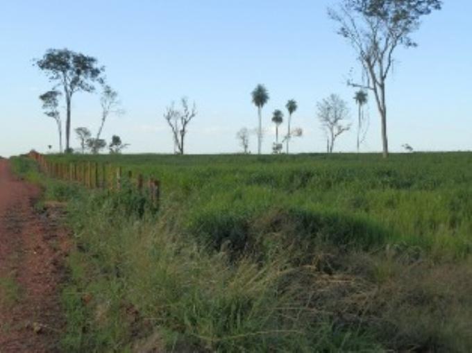 Fazendas em Bonito no bairro Não Especificado