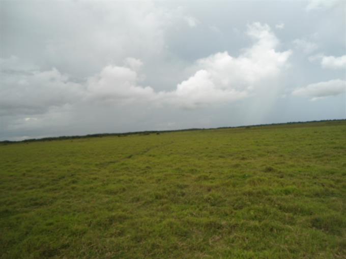 Fazendas em Rio Negro no bairro Zona Rural