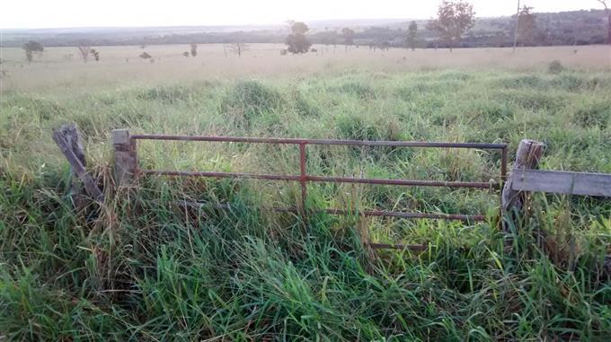 Fazendas em Agua Clara no bairro Não Especificado