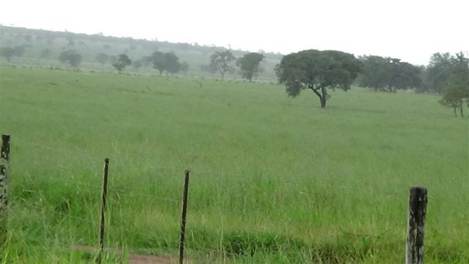 Fazendas em Chapadao do Sul no bairro Zona Rural