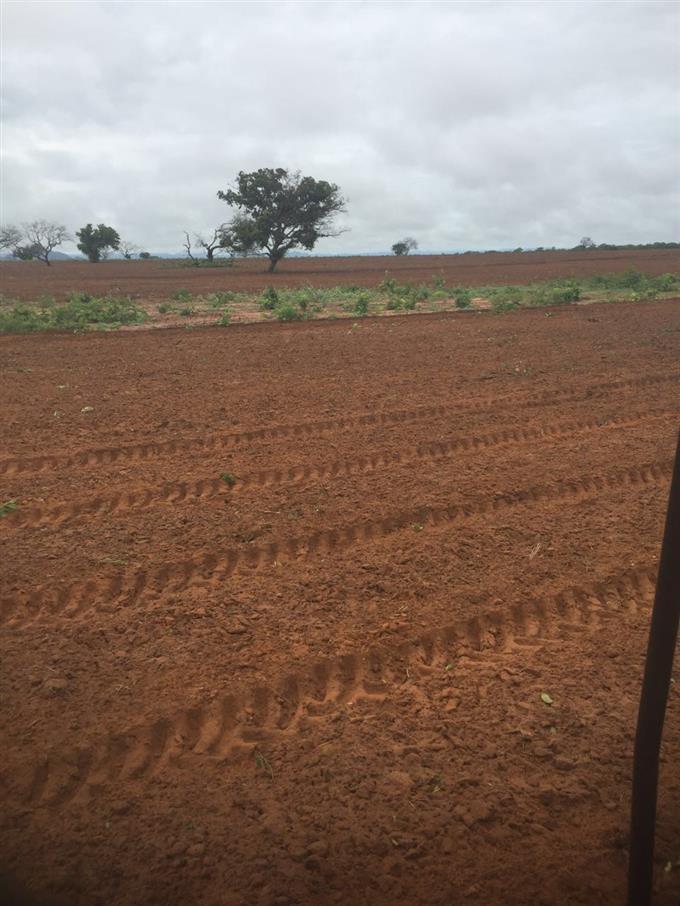 Fazendas em Taguatinga no bairro Não Especificado