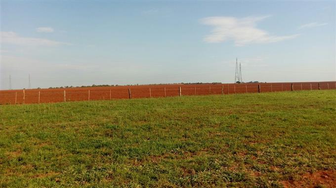 Fazendas em Chapadao do Sul no bairro Não Especificado