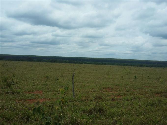 Fazendas em Cassilandia no bairro Não Especificado