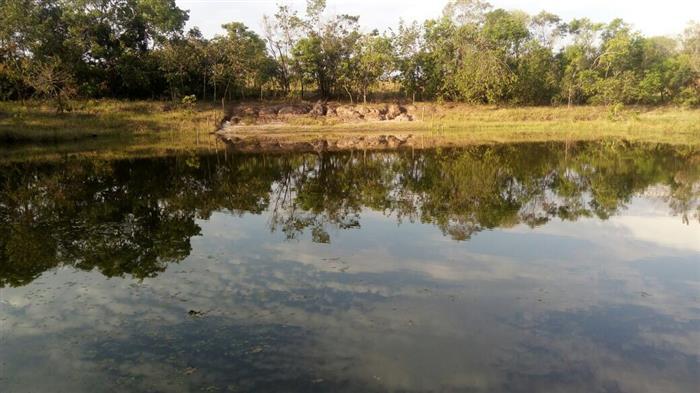 Fazendas Camapua