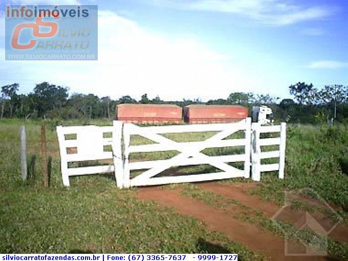 Fazendas em Jaraguari no bairro Não Especificado