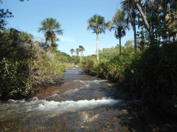 Fazendas em Rio Negro no bairro Não Especificado