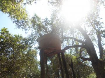 Chácara em Campo Grande Zona Rural  Contate-nos para informações adicionais