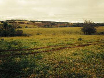 Fazendas Ponta Pora
