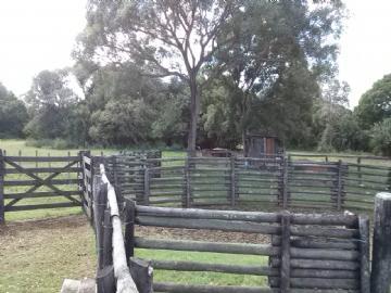 Fazendas Miranda