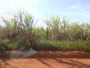 Fazendas no bairro Não Especificado na cidade de Brasilandia