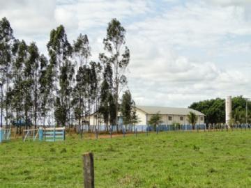 Fazendas no bairro Não Especificado na cidade de Nova Alvorada do Sul