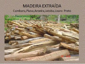 Fazendas no bairro Não Especificado na cidade de Rio Negro