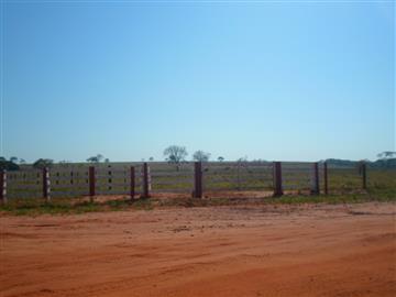 Fazendas no bairro Não Especificado na cidade de Aparecida do Tabuado
