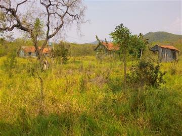 Fazendas no bairro Não Especificado na cidade de Miranda