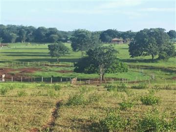 Fazendas no bairro Não Especificado na cidade de Rochedinho
