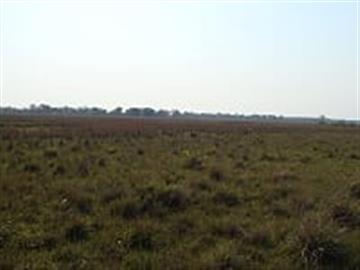 Fazendas no bairro Zona Rural na cidade de Coxim